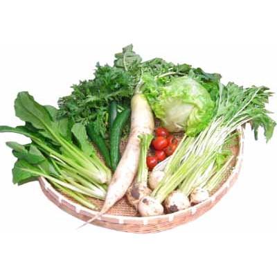 [定期購入]埼玉・沃土会の季節の野菜8品(クール便)(送料無料)_s60