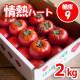 情熱ハート特選2kgたかしまフルーティトマト(送料無料)<2021年4月25日まで受付>_s28