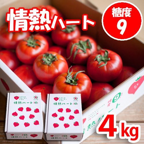 情熱ハート特選4kgたかしまフルーティトマト(送料無料)<2021年4月25日まで受付>_s28