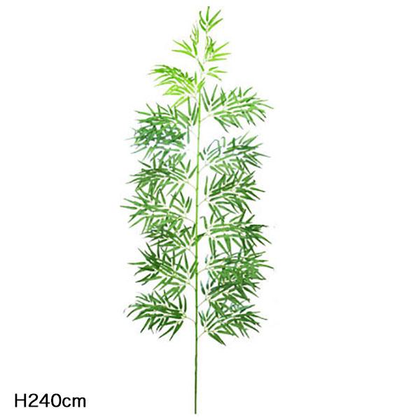 バンブーツリー(笹竹)