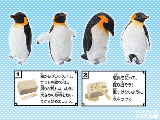 ペンギン発掘作り 48名様用パッケージセット