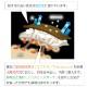 マフラー ネックウォーマー ダウン 日本製 マジックテープ メンズ レディース 暖かい 静電気 蓄熱 キャンプ アウトドア ワークウェア 無地 自転車 ウインタースポーツ