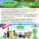 Exotica Freshener(エキゾチカフレッシュナー)ex-pt1-5501 BEA(10332)EXOTICA エキゾチカ ヤシの木型 エアフレッシュナー 芳香剤 吊り下げペーパータイプ(正規輸入品)(車 カーフレグランス エアーフレッシュナー 車用芳香剤 フレグランス)