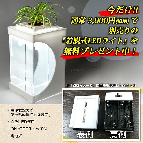 ief-007BK アクアリウム水槽ブラックベース 電池式LEDライト付水槽 手作り品(水槽 インテリア led 黒 金魚 おしゃれ 観葉植物 ライト ブラック アクアリウム インテリア水槽 グリーン)
