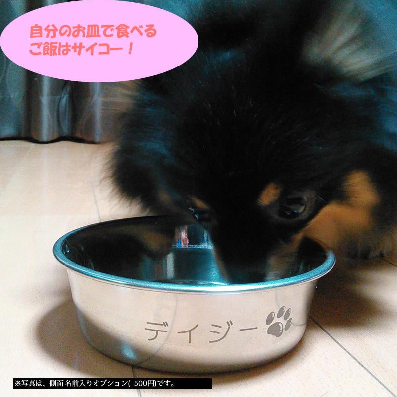 犬猫ウサギ 名前入り ステンレス製フードボウル Lサイズ