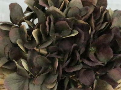秋色紫陽花(ブラウン)