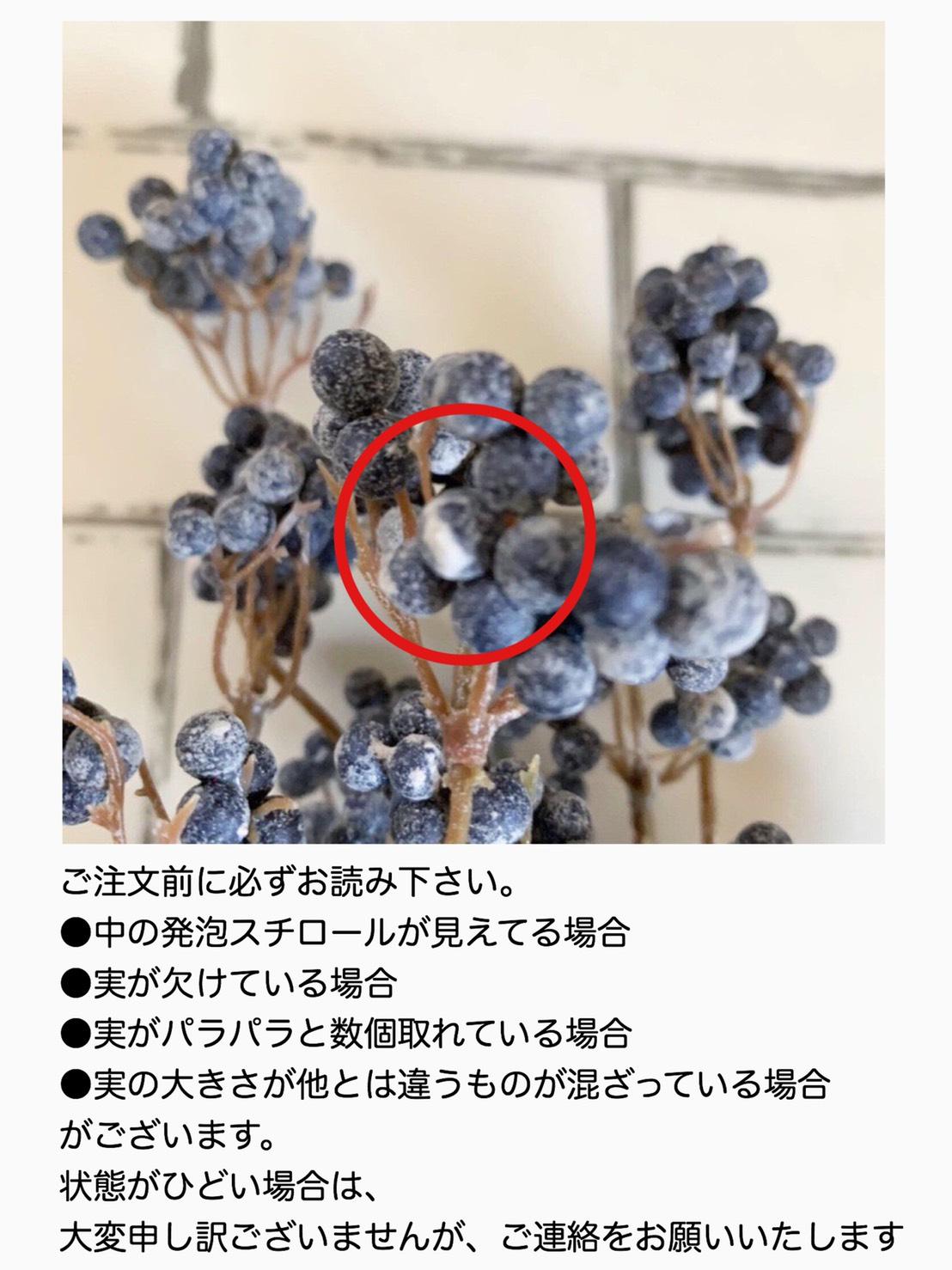 くろい実の枝