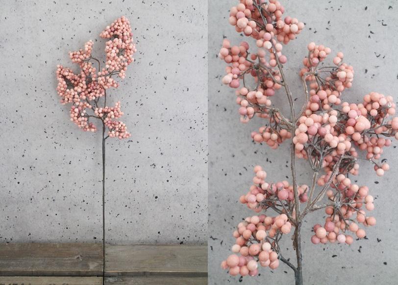 ペッパーベリーS(ピンク)