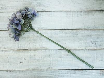 秋色紫陽花(ラベンダー)