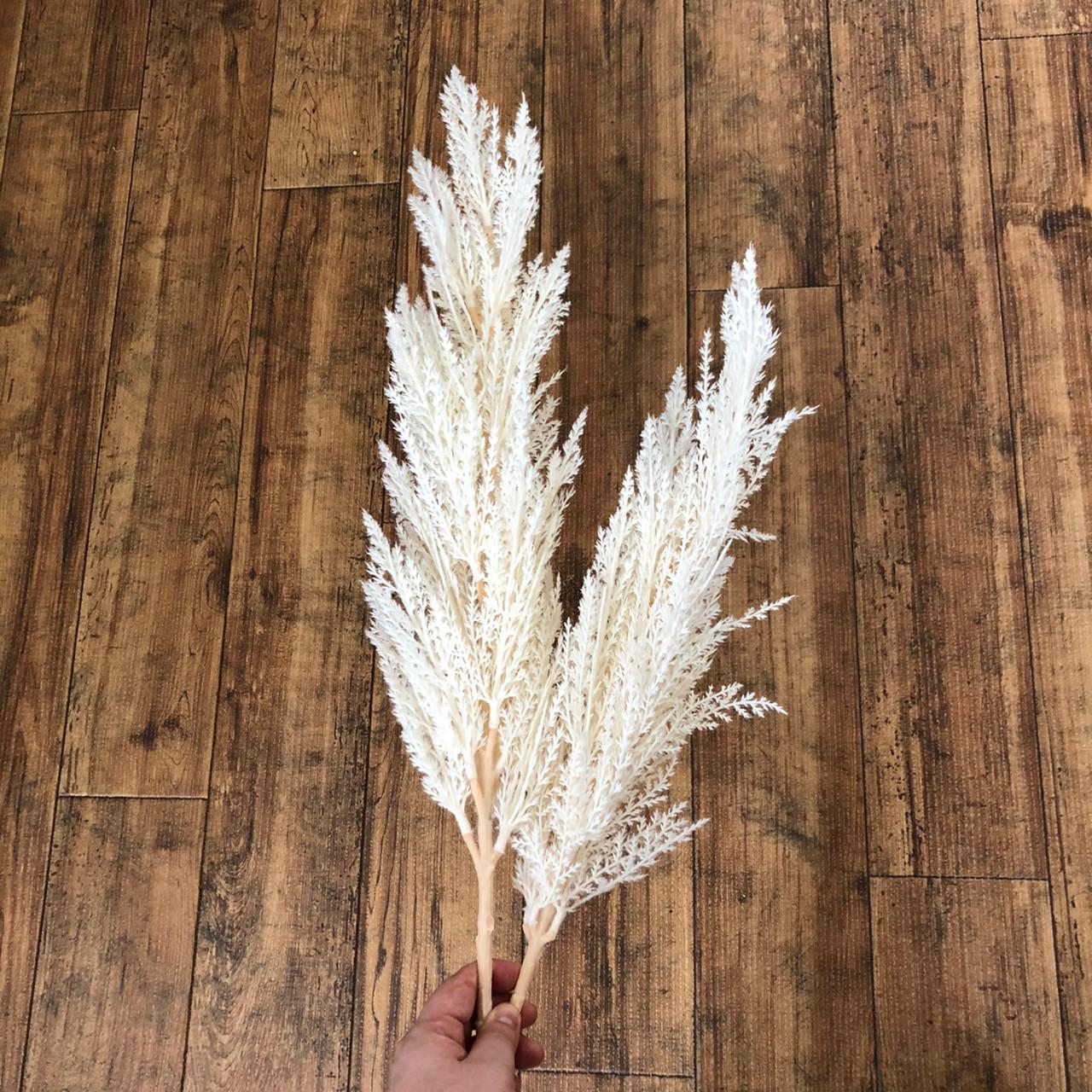 白いパンパスグラスL