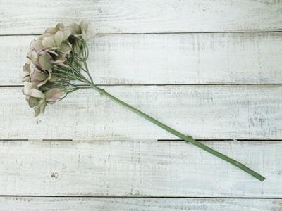秋色紫陽花(グレーグリーン)