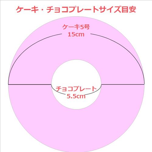 【セット】アニバーサリーケーキ5号 ロウソクつき&写真プリントチョコプレート 直径5.5cm スクエア