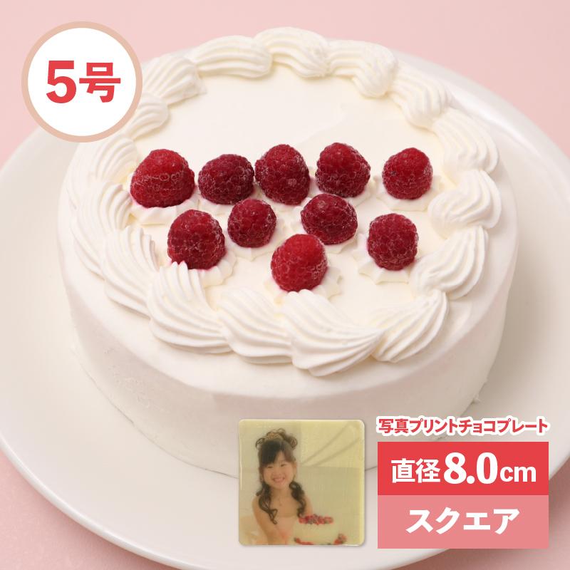 【セット】アニバーサリーケーキ5号 ロウソクつき&写真プリントチョコプレート 直径8.0cm スクエア