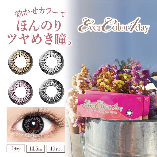 【送料無料】エバーカラーワンデー 1箱10枚入【度なし】