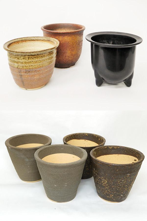 【数量限定販売】 京都小鉢(ミニ盆栽)シリーズ 京藤 (信楽焼アソート陶器)