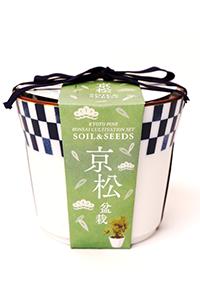 京都小鉢(ミニ盆栽) 種栽培セット 京桜・京紅葉・京松セット