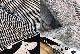 ムーミン タオル 50×70cm MOOMIN AALTO | Finlayson(フィンレイソン)