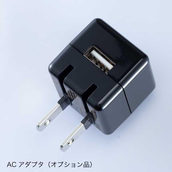 非接触型サーモチェッカー サーマルジャッジL2b