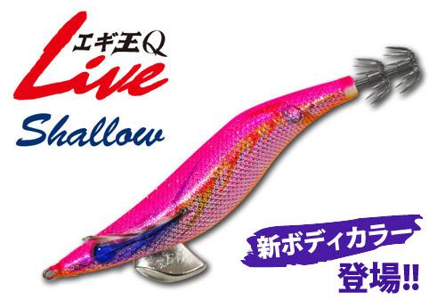 ヤマシタ エギ王Q ライブ(LIVE) 3.5シャロー【メール便可】