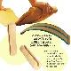 【送料込み】ダスブレット バランスボード コルク付き das.Brett wooden balance board with cork stripe