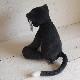 JELLYCAT Meg Cat (MEG2CAT) メグ ねこ ぬいぐるみ