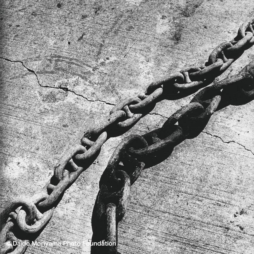 DAIDOMORIYAMA×FlowerMOUNTAIN PAMPAS Chain FM03310