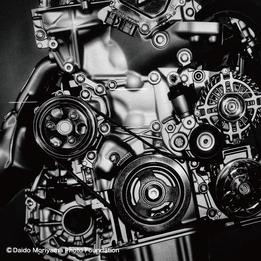DAIDOMORIYAMA×FlowerMOUNTAIN RAIKIRI Engine FM65013