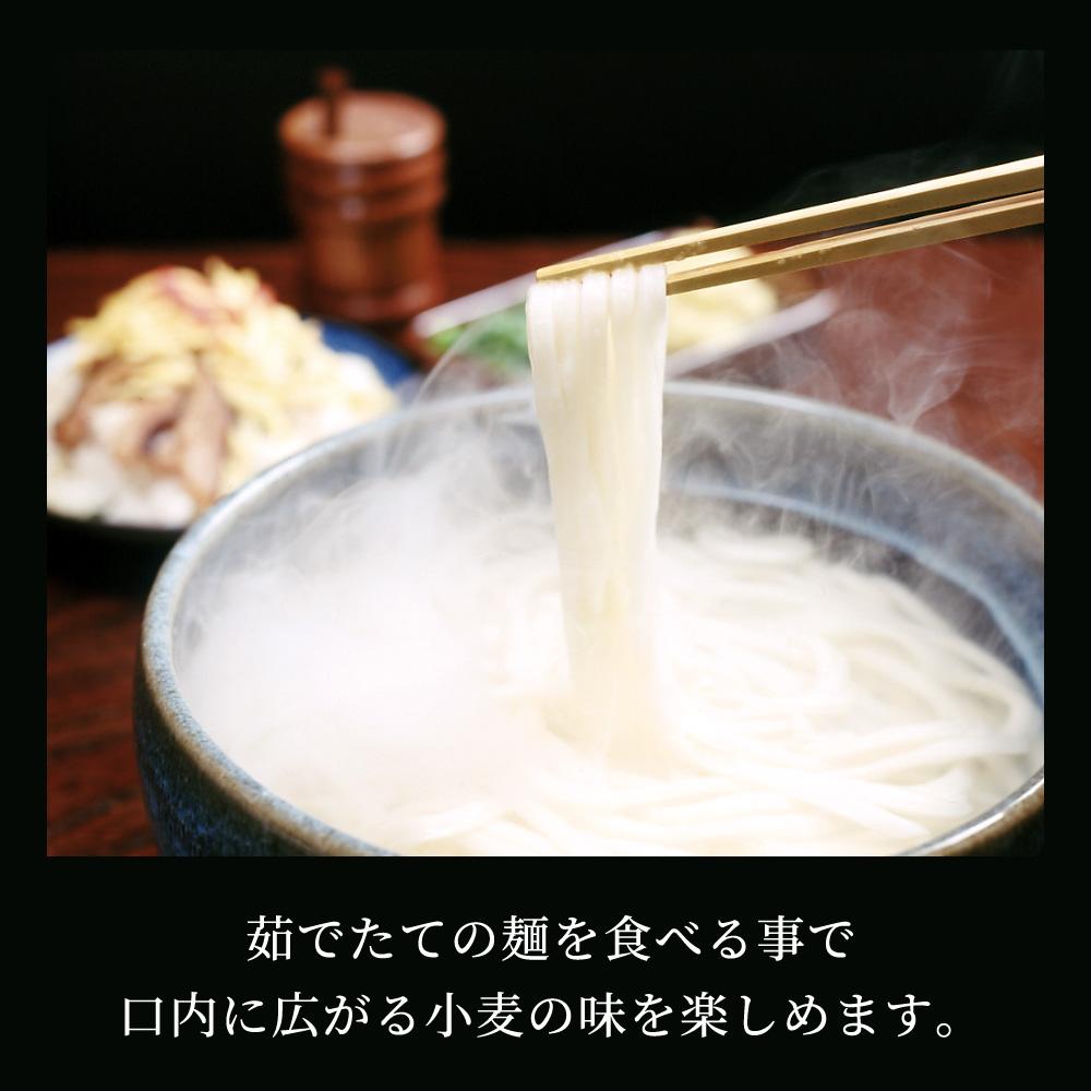 [お試し] 麺七 干しうどん