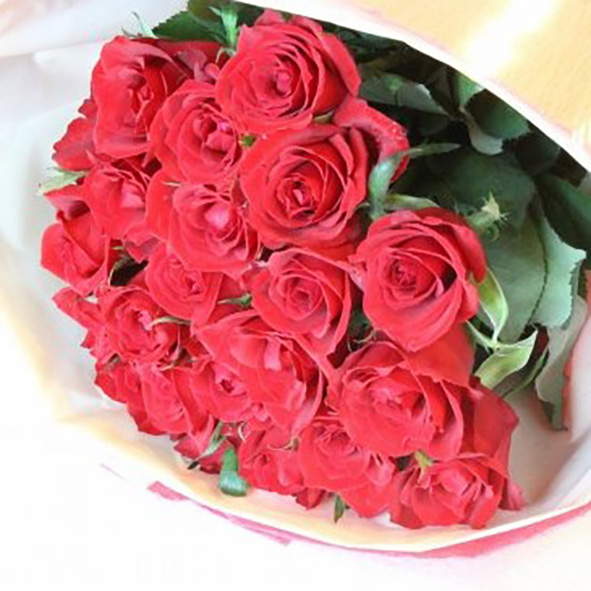 Red Roses 21