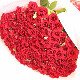 Red Roses 108