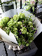 Mother's Day 2021 翠色 suisyoku 旬の素材をたっぷりと使ったフレッシュグリーンブーケを母の日に [ 特選花束 ]