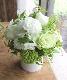 若竹 - wakatake【7月の花】ライムトーンの涼ギフト ~ [ アレンジメント L size ] ★6月〜8月★