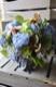 紺碧 - konpeki【6月の花】季節限定の青色ハイドランジアとパフィオのアレンジで個性的に。  ~ [ アレンジメント 3L size ]