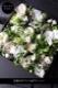ボックスフラワー 27cm 白小町 shirokomachi ラグジュアリーの王道 ホワイト&グリーンを都会的な庭園をイメージしたアレンジで ★都心エリア限定配送
