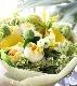 若草 -Wakakusa 幸せを感じる新しい朝に飾りたくなるブーケ [ 特選花束 M size ]