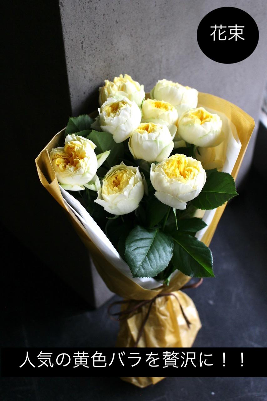 卵 - Tamago - 人気の黄色バラだけを贅沢に束ねたブーケ スマートスタイリッシュな花束 [ 特選花束 S size ]