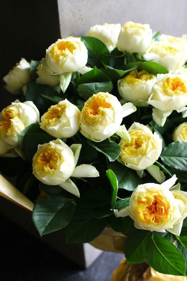 ★ 王卵 - Oran - 人気の黄色バラだけを贅沢に束ねたブーケ スマートスタイリッシュな花束 [ 特選花束 3L size ]  都心エリア限定配送