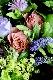 特選花束 M 薄香 usukou【7月の花】バラと夏の花 暑い季節にも花もちが良い品種のバラと旬の花やハーブを合わせたブーケ ★季節限定 6/5~8/25