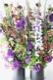 ★ 小式部 ~ エキゾチックで芸術的でありながら古風を感じさせる紫濃淡の花々を伸びやかにアレンジしました。 ~ [ アレンジメント  Special ]  都心エリア限定配送