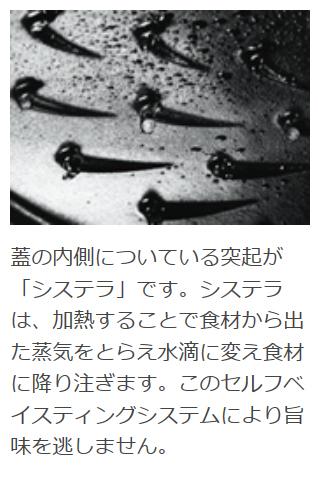 ストウブ ラ・ココットde GOHAN M チェリー【正規輸入品】【生涯保証付】