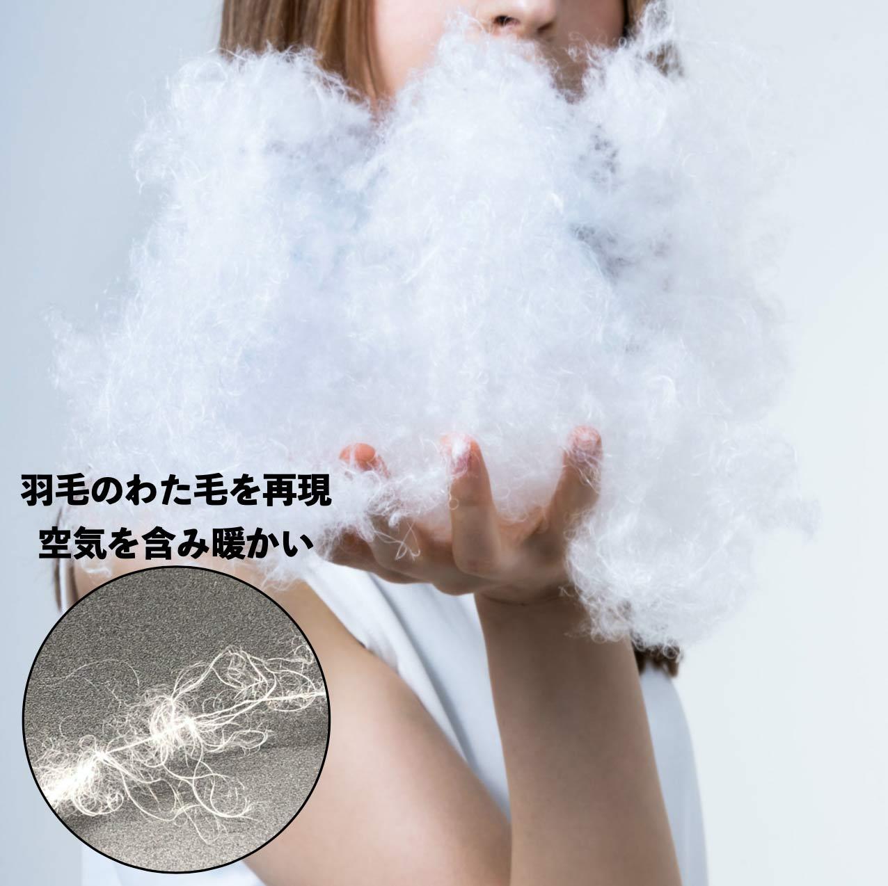 防ダニ・防塵掛け布団 ピューリスト(R)air warm eco with ミクロガード (R)スタンダード