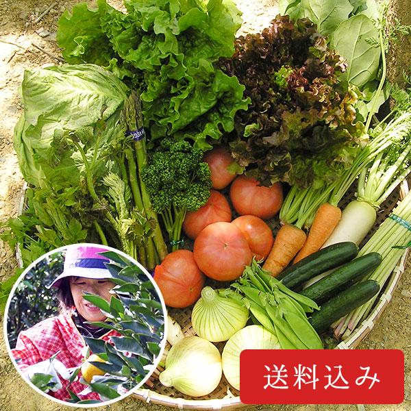 おまかせ内子産 旬の野菜セット