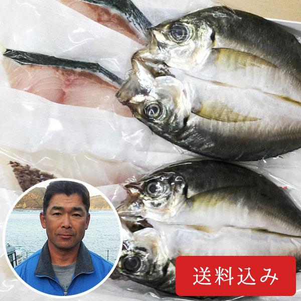 宇和島・蒋淵の美味旨味干しセット(養殖真鯛、養殖真アジ、養殖ブリ)