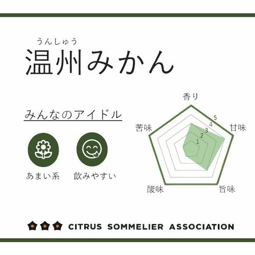 柑橘ジュースセットB【3本】(温州みかん・はるか・甘平)