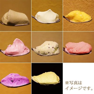 愛媛県産農産物とイタリアン定番食材のジェラート・アイスクリームセット(8個セット)