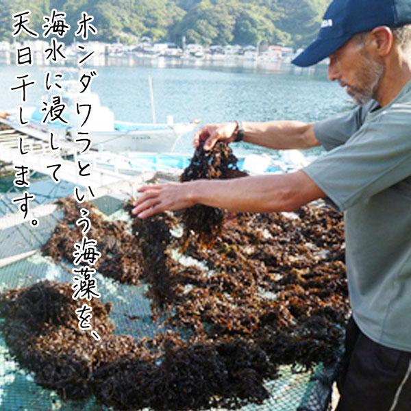 蒋淵の藻塩(50g×1袋)