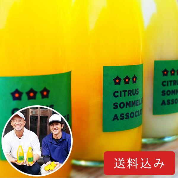柑橘ジュースセット