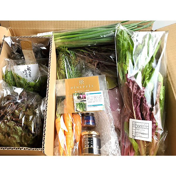 アンチョビ&松山市産オーガニック野菜詰め合わせ