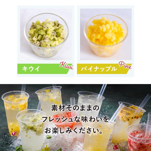 冷凍フルーツ パッションフルーツ 500g×24袋 1袋510円