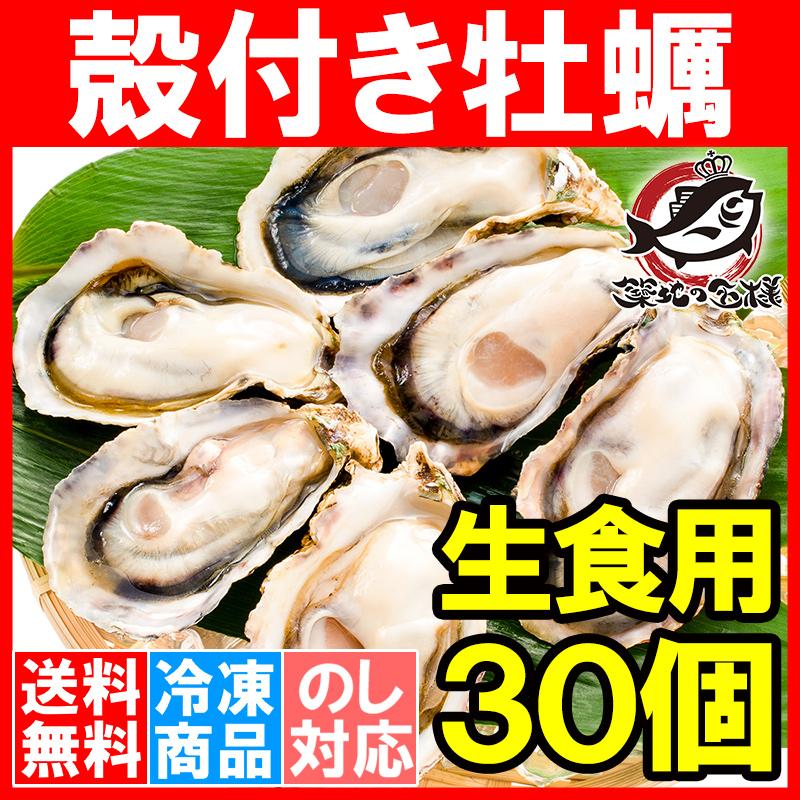 生牡蠣 殻付き 生食用カキ 生牡蠣 30個入り 冷凍殻付き牡蠣